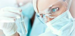 Células tronco produzindo dentes naturais